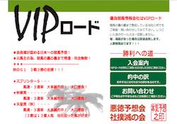 vip0006